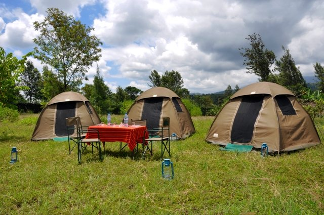 Budget Camping safari