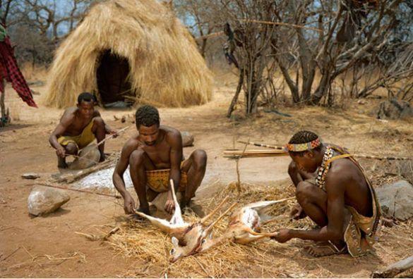 Bushmen#