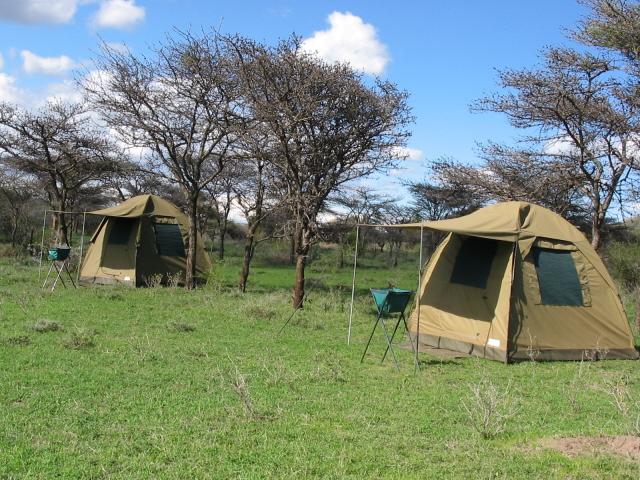 Camps Setup