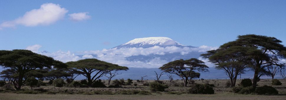 NCA -Kilimanjaro