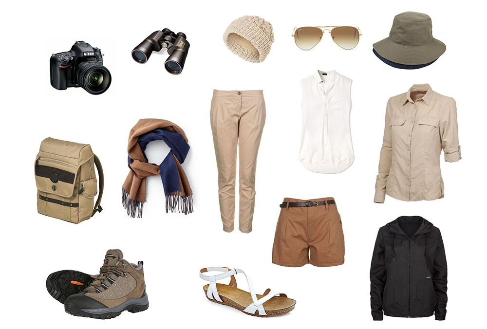 safari basics for women