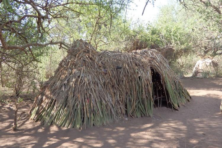 Bushmen house